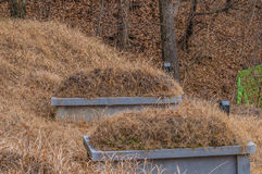 Two burial mounds  in a wooded area Stock Photo