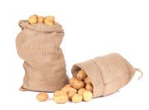 Two burlap sacks with potatoes. royalty free stock photos