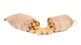 Two burlap sacks with potatoes. Stock Photography