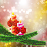 Two burning candles with bows on Christmas tree branch Royalty Free Stock Images