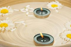 Two burning candles, heads of camomiles in dish Royalty Free Stock Images