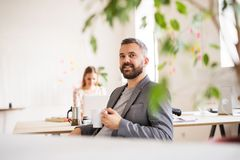 Two business people with wheelchair in the office. Stock Image