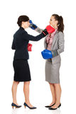Two business women with boxing gloves fighting. Royalty Free Stock Photo