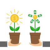 Two businessman hand holding Growing paper money tree shining coin with dollar sign Plant in the pot. Financial growth concept.  Royalty Free Stock Image