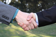 Two businessmen hands handshake. On nature background royalty free stock images