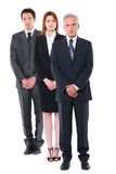 Two businessmen and one businesswoman Royalty Free Stock Photo