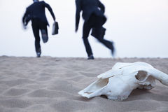 Two businessmen running away from an animal skull in the middle of the desert Royalty Free Stock Photography