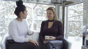 Two businesswoman drinks coffee and talking. Two businesswomen drinks coffee and talking sitting on the sofa near the window. Pretty females enjoys a stock video footage