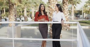 Two businesswoman standing chatting outdoors. Two elegant attractive young businesswoman standing chatting outdoors leaning on a railing in an urban park with stock footage