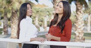 Two businesswoman in an urban park stock footage