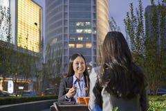 Two Businesswomen Eating Dinner Stock Image