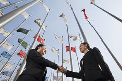 Two businesswomen shaking hands with flags in background. Royalty Free Stock Photo