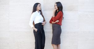 Two businesswomen standing chatting outdoors stock video footage