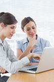 Two businesswomen working on laptop together. At desk in office Stock Photography