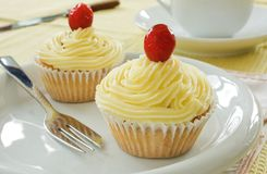 Two buttercream iced cakes. On a white plate royalty free stock photography