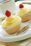 Two buttercream iced cakes. On a white plate royalty free stock image