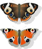 Two butterflies Royalty Free Stock Image