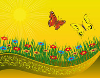 Two butterflies on a blooming meadow Royalty Free Stock Images