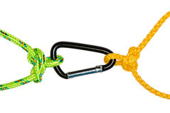 Two butterfly knots and carabiner Royalty Free Stock Photo