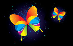 Two butterflys on a black background.  Stock Photos