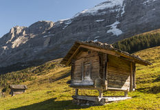 Two Cabins in Switserland Alps with Eiger. Two old wooden cabins in Switserland Alps with Eiger and snow in a meadow with evening light Royalty Free Stock Photos