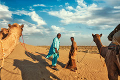 Two cameleers camel drivers with camels in dunes Royalty Free Stock Photography