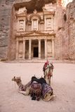 Two camels in front of Treasury at Petra Jordan Royalty Free Stock Photos