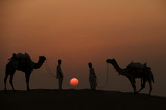 Two Camels and Jockey's Silhouetted In The Desert. A color photograph of two camels and two jockey's silhouetted against a glowing orange sun as it sets in the Stock Photos
