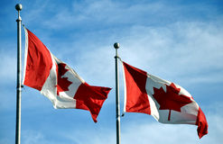 Two Canadian flags Royalty Free Stock Photos