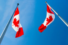 Two Canadian flags Stock Image