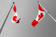 Two Canadian flags Royalty Free Stock Photo