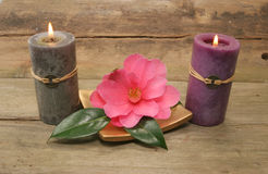 Two candles and a flower. Two candles and a Camellia flower on a background of rustic wood Royalty Free Stock Photos