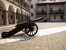 Two cannon Royalty Free Stock Photo