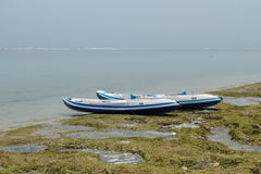 Two canoe on the ocean beach. Two modern canoe boats with oars on the ocean beach Royalty Free Stock Image