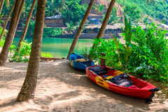 Two canoes in the shade of tropical palm trees Royalty Free Stock Photo