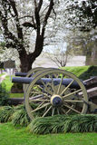 Two canons Stock Photos