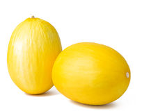 Two cantaloupe melons with copy-space Stock Images