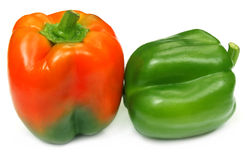 Two Capsicums Royalty Free Stock Images