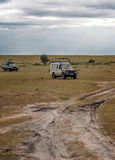 Two car safari. In the savannah of Kenya, is a picture vertically on a cloudy day Royalty Free Stock Image