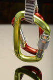 Two carabiners on a hanger Stock Photography