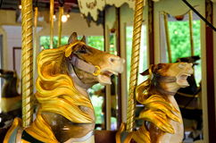 Two Carousel Horses Royalty Free Stock Image