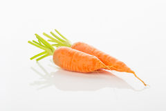 Two carrots in white background Stock Photography
