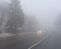 Two Cars Driving in Thick Fog. Image of two vehicles approaching in thick fog on a cold wet winter afternoon. Two pairs of headlights approach a pine tree by the Stock Image