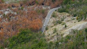 Two cars traveling in the mountains, among orange trees. In autumn stock video footage