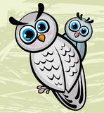 Two cartoon funny owl Stock Photography