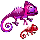 Two cartoon iguanas in red and purple color Stock Photos