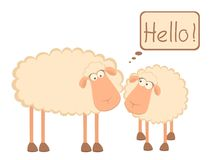 Two cartoon smiling sheep Stock Photos
