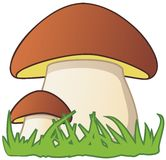 Two cartoon style mushrooms Royalty Free Stock Image