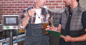Two casual men testing beer in the beaker stock footage