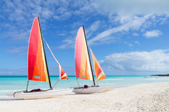 Two catamarans with its colorful sails wide open Stock Image